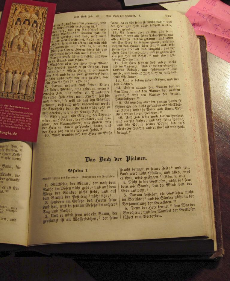 Allioli-Bibel, 1851 (eigenes Bild)