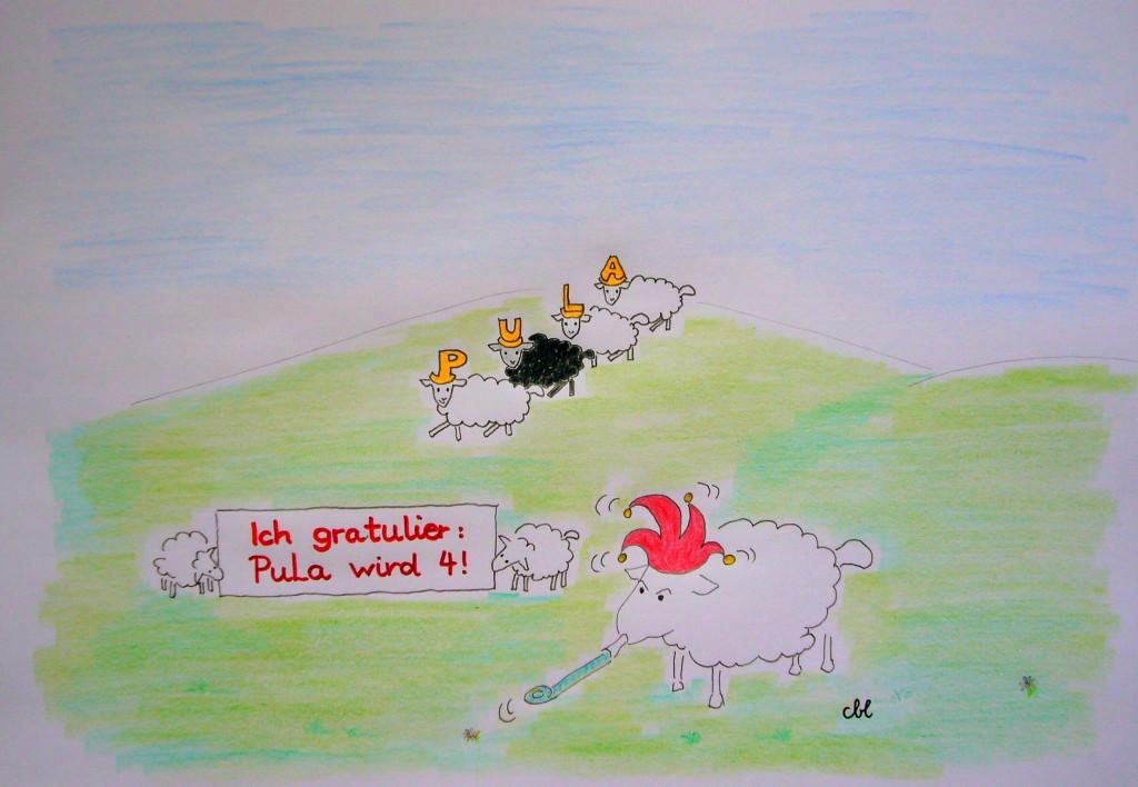 Die Schafe gratulieren (eigenes Bild, CBL)