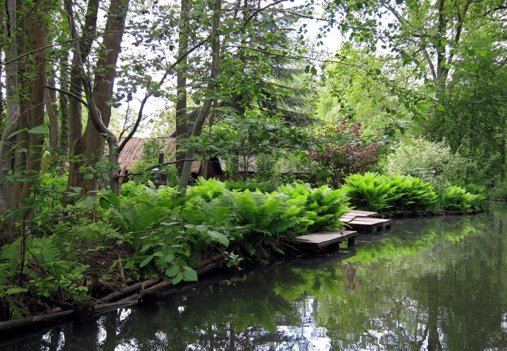 Im Spreewald (eigenes Bild)