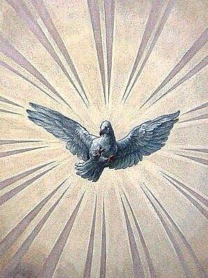 Der Hl. Geist in Gestalt einer Taube, Fresko in der Karlskirche in Wien (Johann Michael Rottmayr) Bild: Wikimedia Commons, Manfreeed)